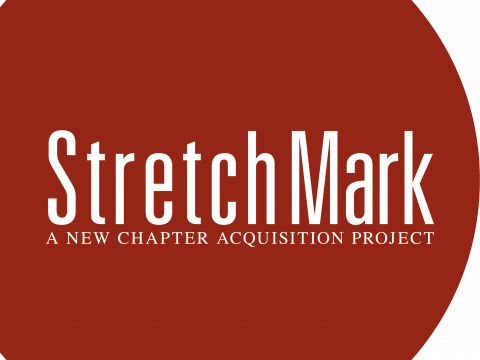 Art For Lunch: StretchMark