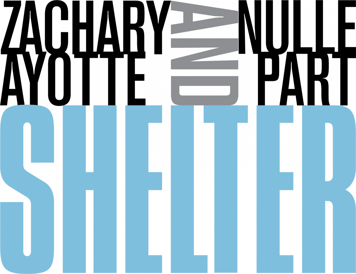 Shelter exhibition title treatment