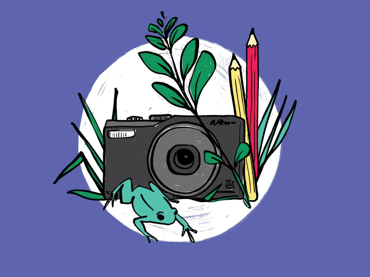 Illustration of camera, pencils and nature